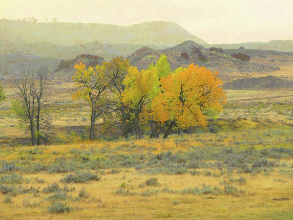 Photograph - Montana Autumn Reverie by Cris Fulton