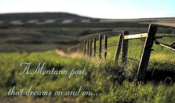 Photograph - Montana Dream by Susan Kinney