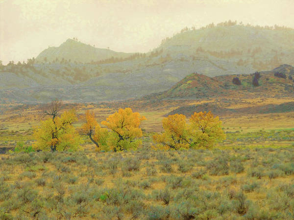Photograph - Montana October Reverie by Cris Fulton