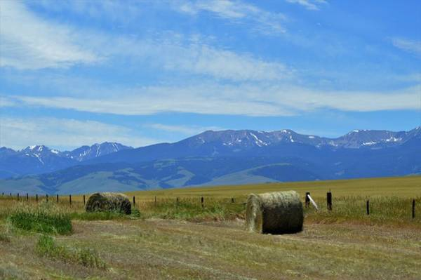 Photograph - Montana Scene by Michelle Hoffmann
