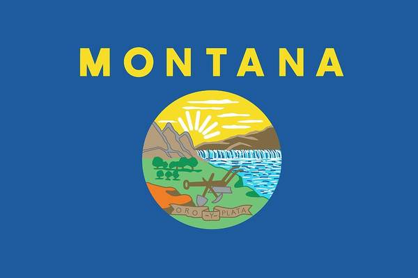 Yellow Ribbon Painting - Montana State Flag by American School