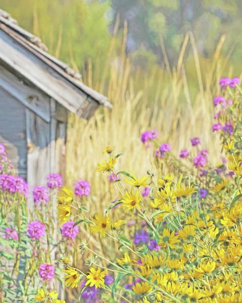 Wall Art - Photograph - Montana's Summer Flowers by Jennie Marie Schell
