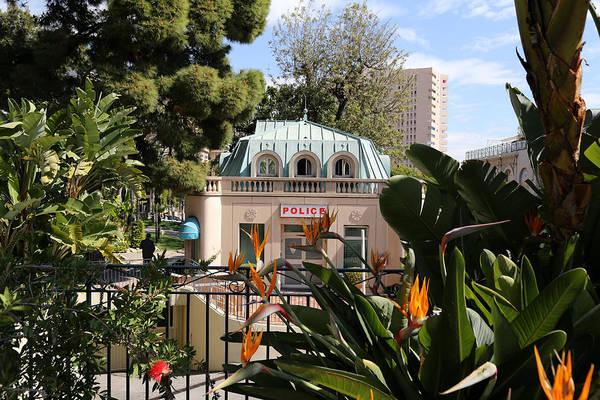 Photograph - Monte Carlo 6 by Andrew Fare