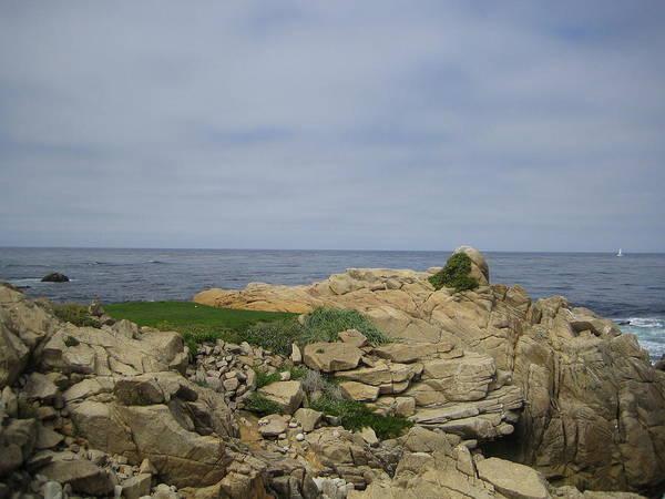 Photograph - Monterey Beach California Usa by John Shiron