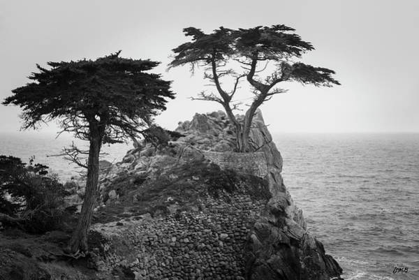 Photograph - Monterey Peninsula II Bw by David Gordon