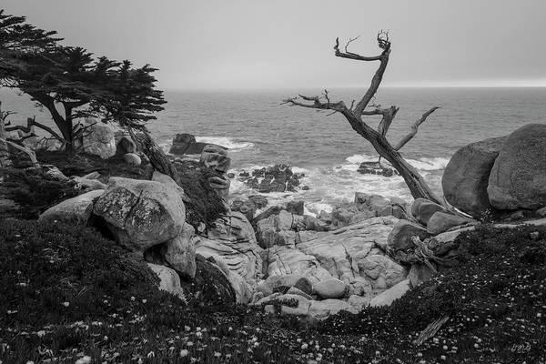 Photograph - Monterey Peninsula IIi Bw by David Gordon