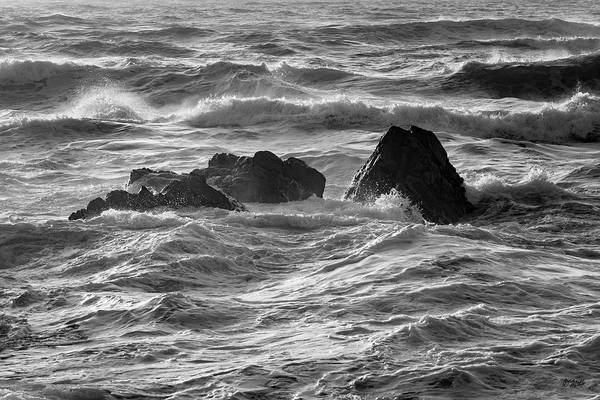 Photograph - Monterey Peninsula Iv Bw by David Gordon