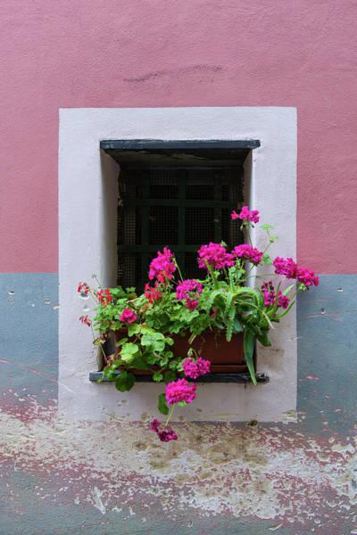 Photograph - Monterosso Window by Michael Blanchette