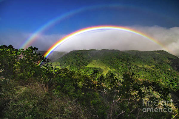 Wall Art - Photograph - Monteverde End Of The Rainbow by Norma Brandsberg