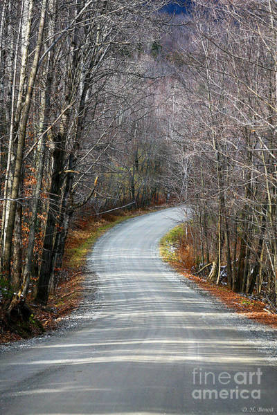 Photograph - Montgomery Mountain Road by Deborah Benoit