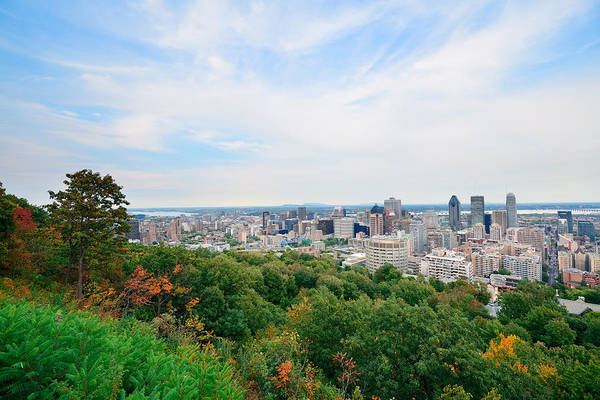 Photograph - Montreal Day View by Songquan Deng