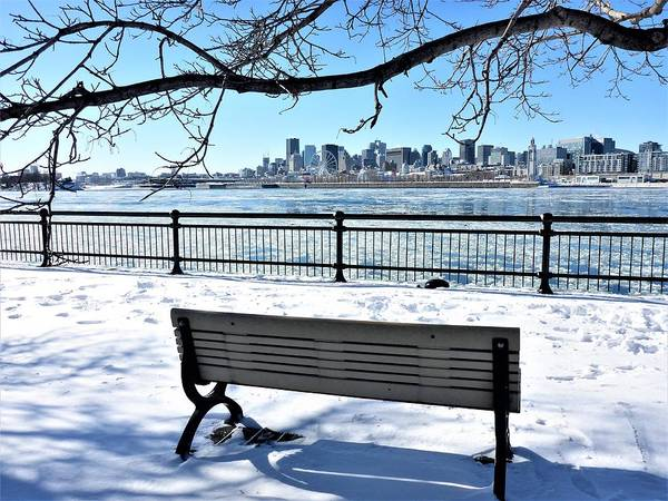 Photograph - Montreal - Winter Cityscape by Cristina Stefan