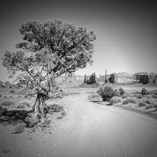 Geologic Formation Photograph - Monument Valley Drive And Totem Pole Black And White by Melanie Viola