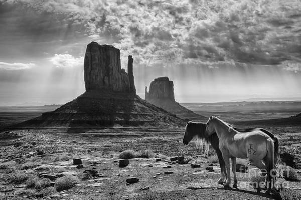 The Mitten Photograph - Monument Valley Horses by Priscilla Burgers