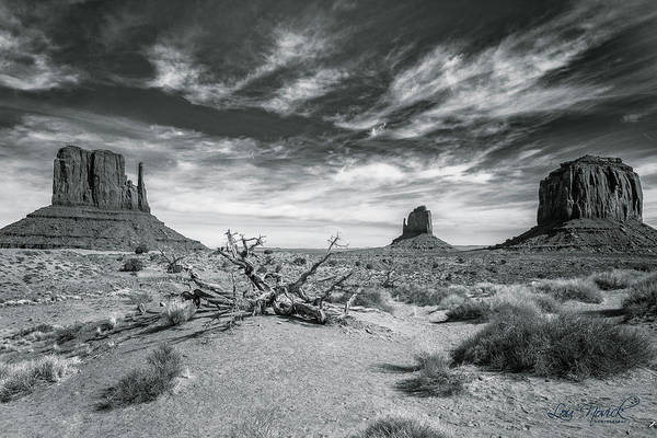 Photograph - Monument Valley by Lou Novick
