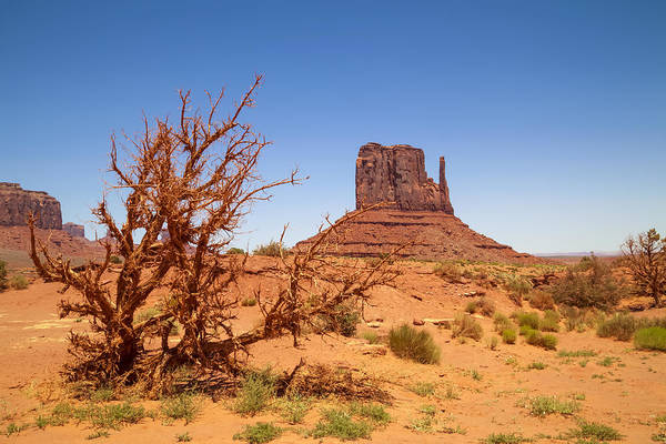 Geologic Formation Photograph - Monument Valley West Mitten Butte And Landscape by Melanie Viola