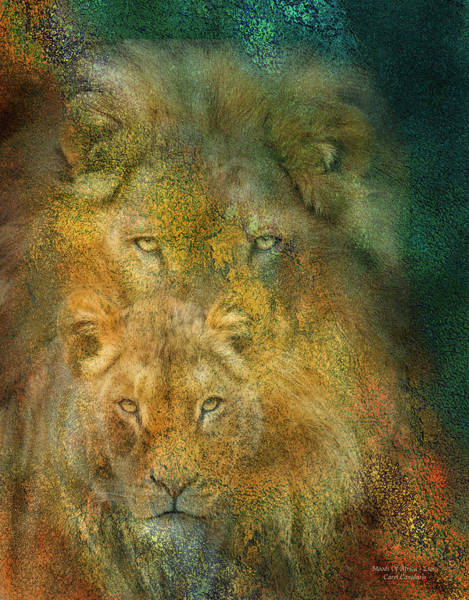 Male Mixed Media - Moods Of Africa - Lions by Carol Cavalaris