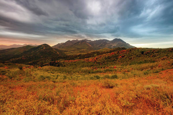Wall Art - Photograph - Moody Autumn Morning by Johnny Adolphson