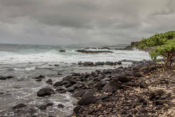 Photograph - Moody Beach by Teresa Wilson