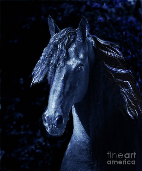 Digital Art - Moody Blues by Melinda Hughes-Berland