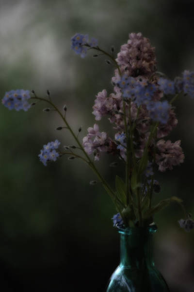 Wall Art - Photograph - Moody Bouquet by Bonnie Bruno