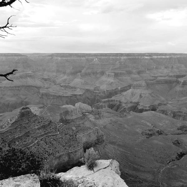 Photograph - Moody Canyon by Sarah Marie