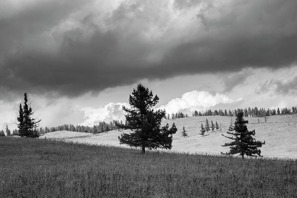 Photograph - Moody Meadow, Tsenkher, 2016 by Hitendra SINKAR