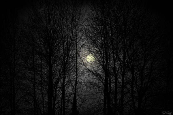 Photograph - Moody Moon by Dee Browning