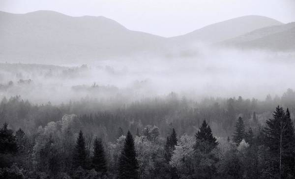 Photograph - Moody Morning In The White Mountains National Forest by Dan Sproul