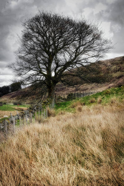 Photograph - Moody Scenery In Central Scotland by Jeremy Lavender Photography