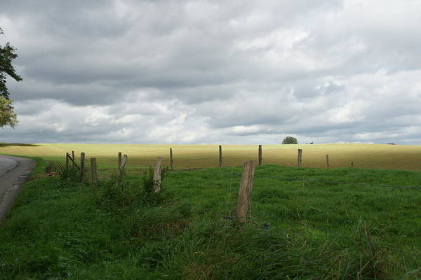 Wall Art - Photograph - Moody Skies In The Belgian Countryside by Brandy Herren