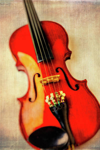 Frets Photograph - Moody Violin by Garry Gay