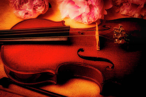 Bluegrass Photograph - Moody Violin With Peonies by Garry Gay