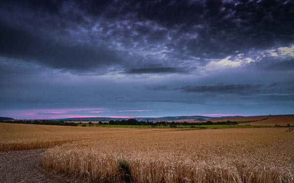 Photograph - Moody Wheat Field Sunset by Framing Places