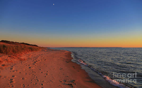 Photograph - Moon Above Sunset by Rachel Cohen