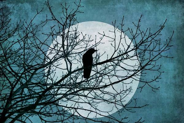 Digital Art - Moon And Raven by Patricia Strand