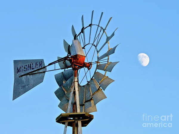 Photograph - Moon Breeze by Mark Miller