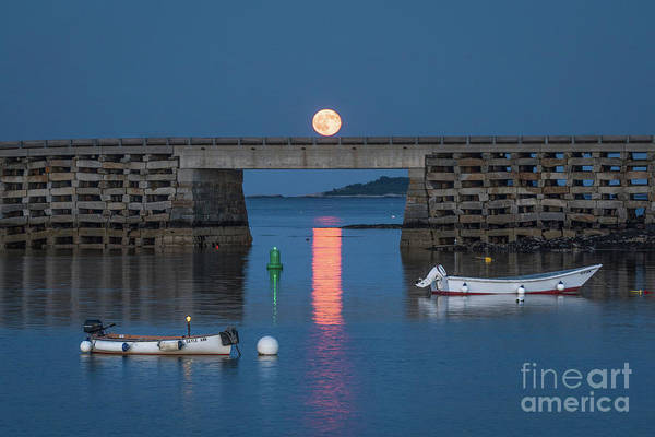 Blue Hour Photograph - Moon Crossing by Benjamin Williamson
