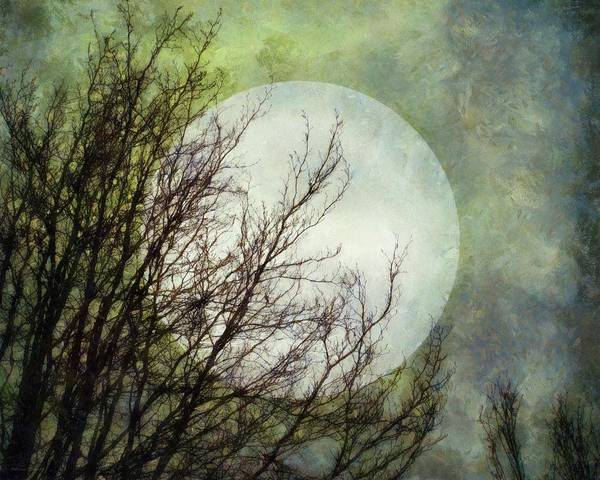 Digital Art - Moon Dream by Patricia Strand