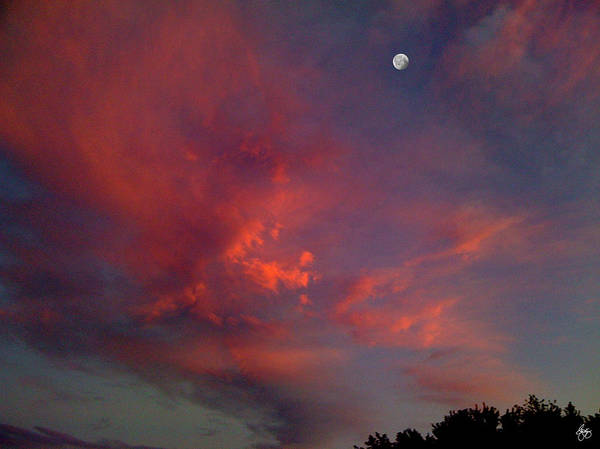 Photograph - Moon In A Painted Sky by Wayne King