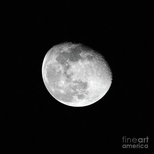 Photograph - Moon In Phase by Kevin McCarthy