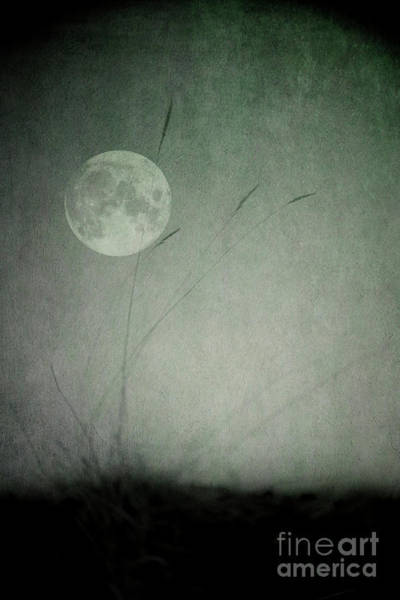 Wall Art - Photograph - Moon In The Dark by Priska Wettstein