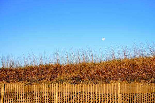 Photograph - Moon In The Morning by Michael Scott
