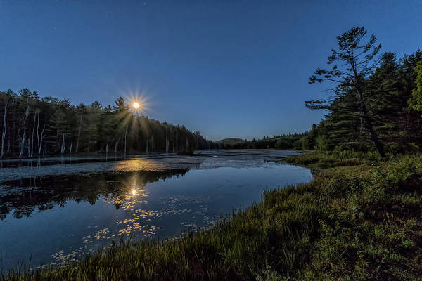 Photograph - Moon On North Pond Road by Tom Singleton