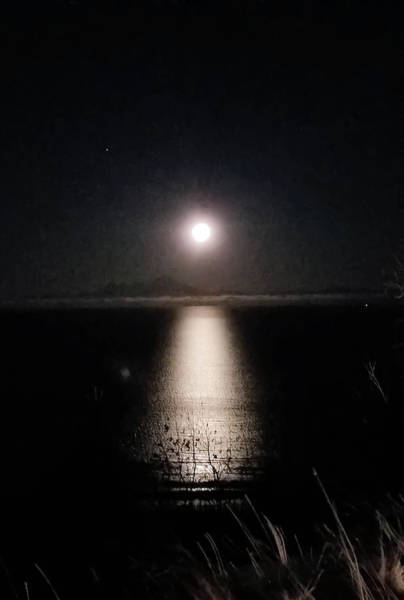 Inlet Photograph - Moon On Ocean by Britten Adams