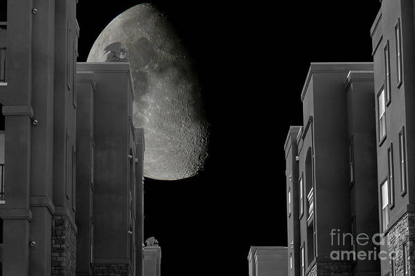 Wall Art - Photograph - Moon Over Manhattan by Tim Hightower