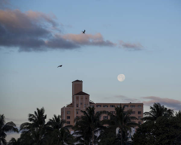 Photograph - Moon Over Miami Beach by Toby McGuire