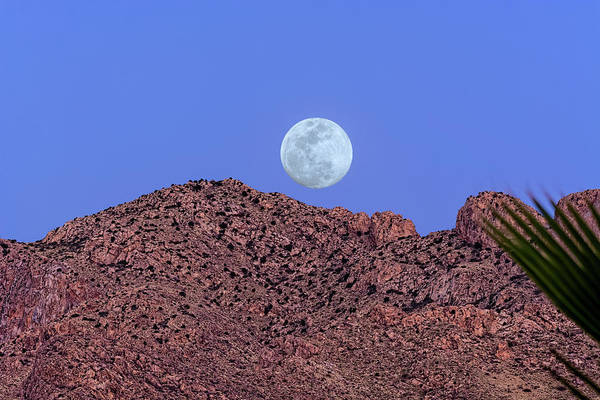 Photograph - Moon Over Pusch Ridge H1816 by Mark Myhaver