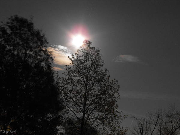 Saint Louis County Photograph - Moon Rainbow Corona With Trees by Ginger Repke