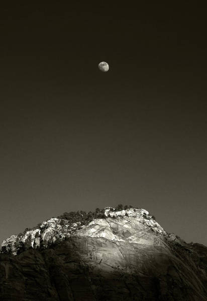 Photograph - Moon Rise From Pa'rus Trail, Zion Np, Utah by Michael Kirk